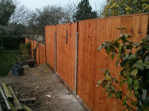 Fence building Farnham