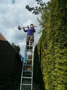 Hedge trimming Godalming, Guildford